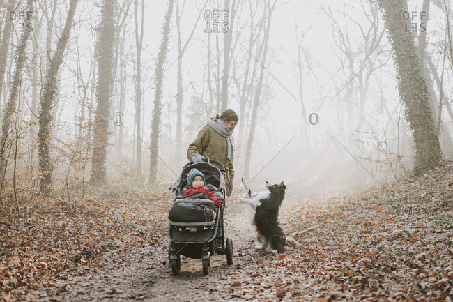 Mother with children and border collie during forest walk in autumn