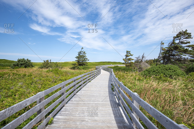Canada-�Prince Edward Island-�Greenwich- Empty boardwalk in Prince Edward Island National Park