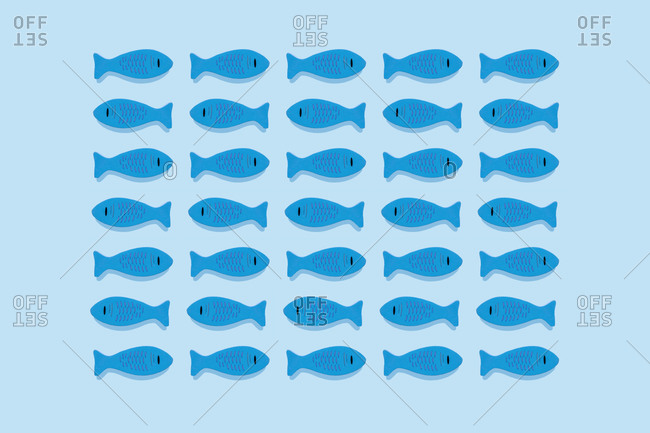 Studio shot of blue wooden toy fish