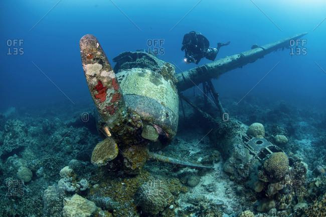 Palau- Diver exploring Japanese airplane wreck Jake sea plane underwater