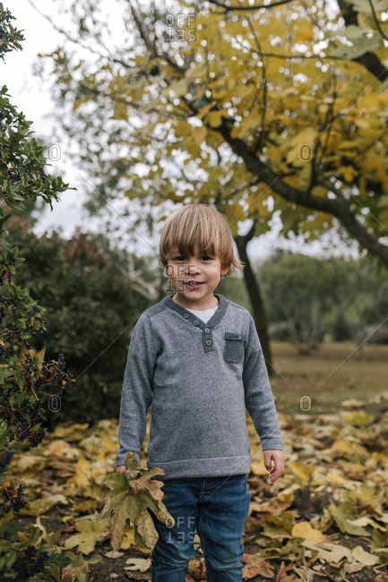 Portrait of little boy collecting leaves in autumn