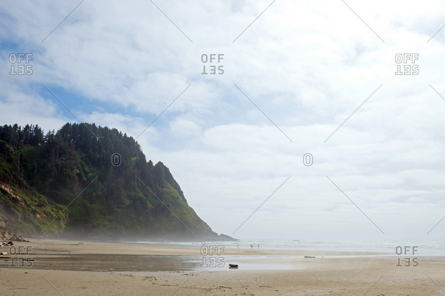 Beach landscape, tree covered cliff overlooking ocean and cloudy sky