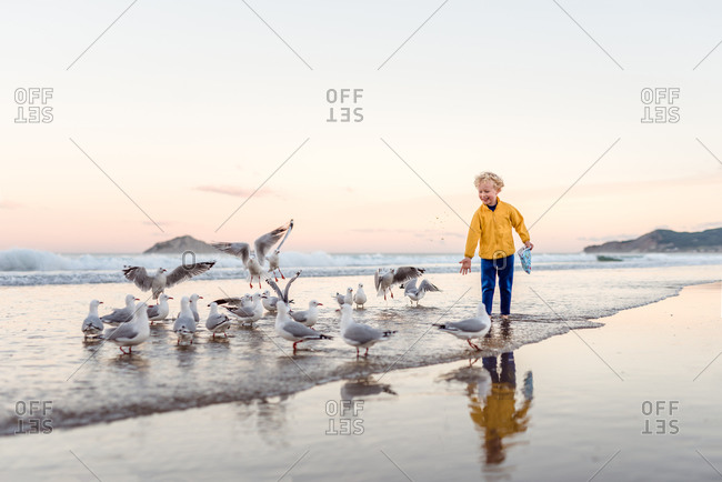 Happy little boy sharing snacks with seagulls