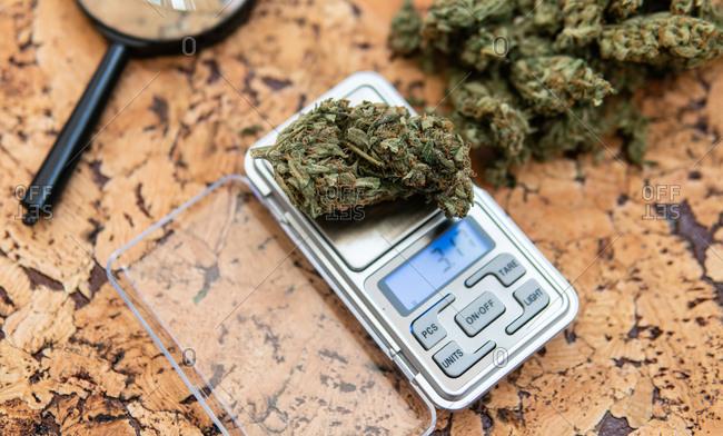 Weighing marijuana buds on a scale.