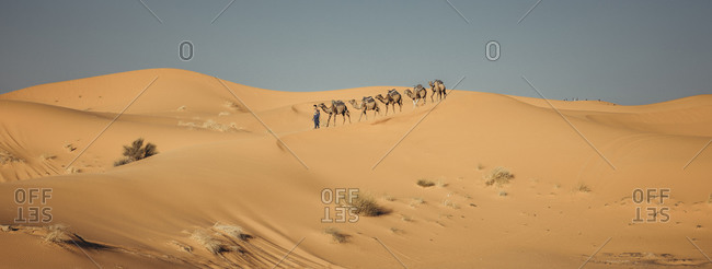 Morocco, Sahara, Merzouga - April 20, 2019: People riding dromedary through the desert