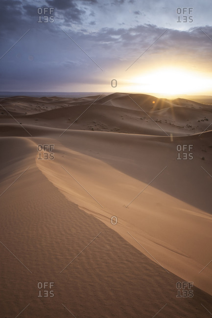 Details of desert with dromedaries