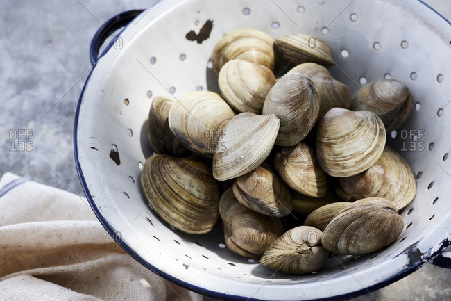 Little neck clams in strainer
