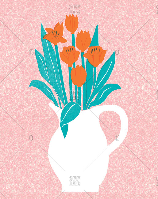 Tulips in a white pitcher on a pink background