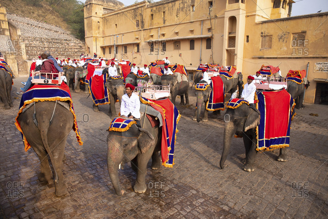 Jaipur, India - January 4, 2020: Tour guides with tourists on elephants at Amber Fort, Jaipur, India