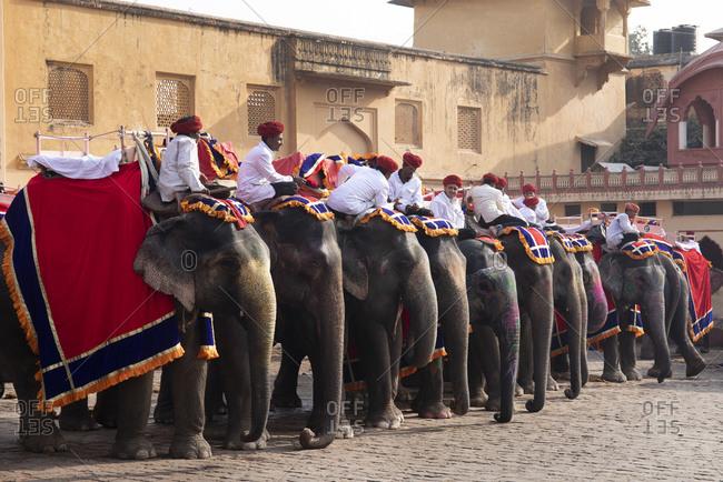Jaipur, India - January 4, 2020: Tourists on elephants visiting Amber Fort, Jaipur, India