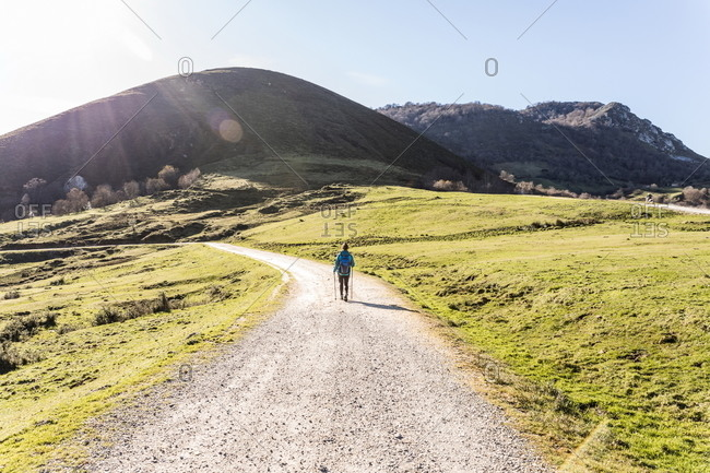 Back view of unrecognizable female trekker in active wear walking on dirt path with trekking poles on green hill with mountains and blue sky on background
