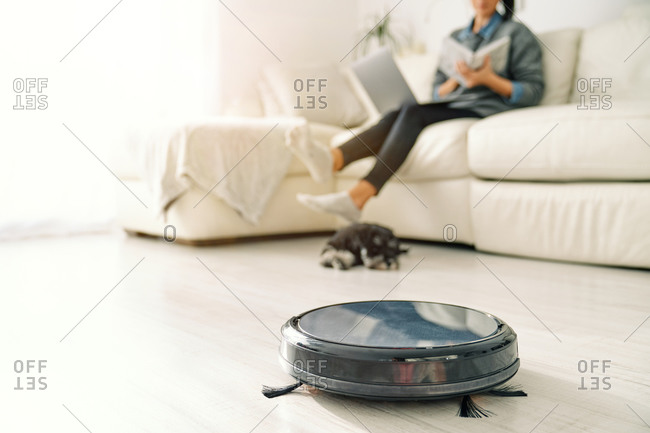 Cute puppy lying down next round black robotic vacuum cleaner while crop woman sitting on sofa in light room with laminate floor