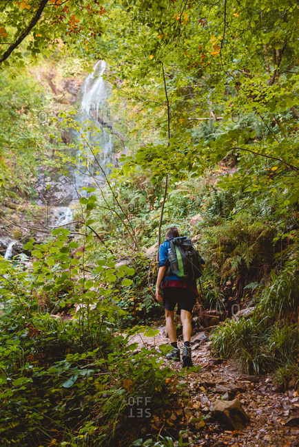 Back view of anonymous woman walking with backpack near waterfall in forest in summer day