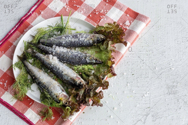 From above prepared savory mackerel served on leaves of salad with pieces of sea salt on plate on white background