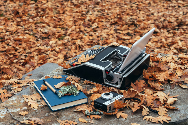 From above vintage old typewriter with a tablet instead of paper in autumn with leaves everywhere on a stone table in a oak forest