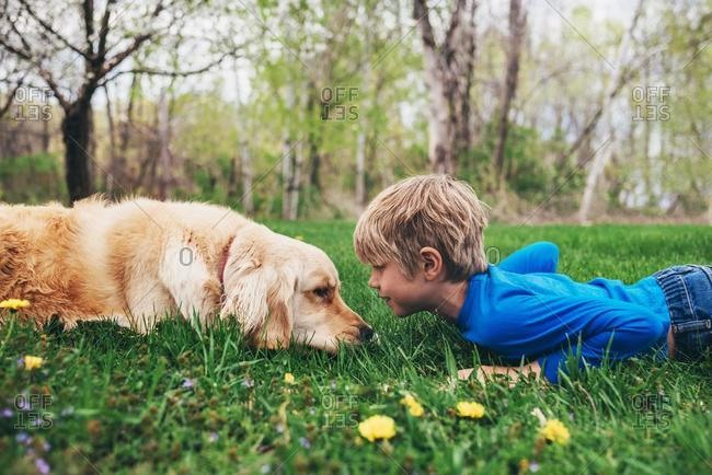 Boy and his golden retriever dog lying on grass looking at each other, USA