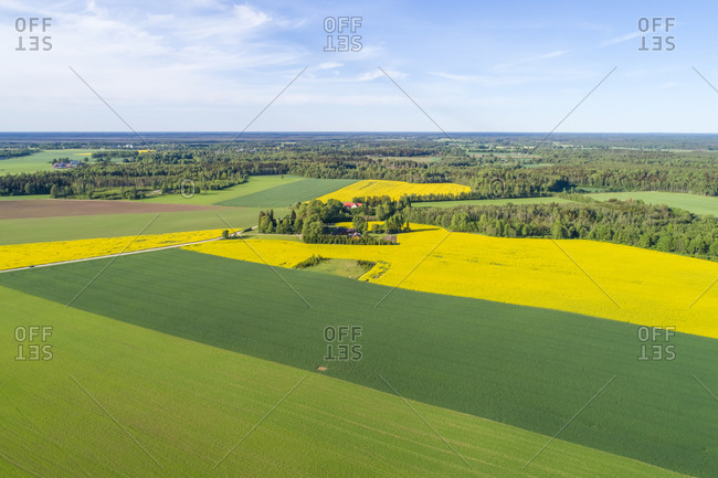 Aerial view of a green field in a rural area Orguse, Rapla County, Estonia