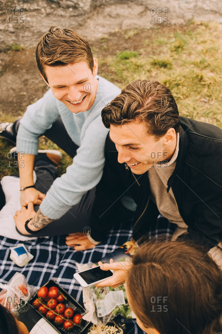 High angle view of male friends talking while sitting on picnic blanket