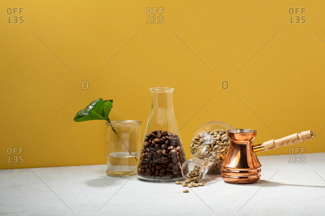 Brown and green coffee beans in flasks by plant