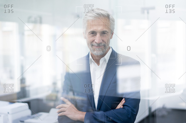 Portrait of businessman with grid over his face