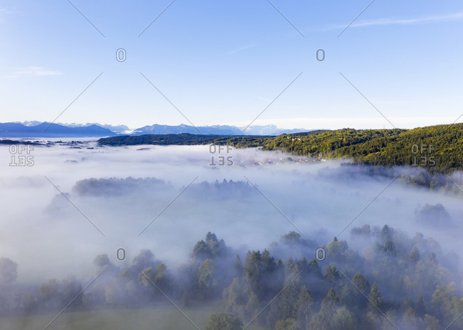 Germany- Bavaria- Eurasburg- Aerial view of forest shrouded in fog