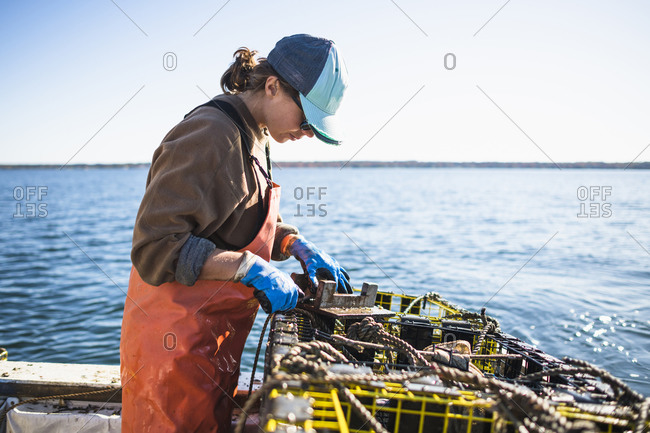 Woman measuring conch on shellfishing boat on Narragansett Bay