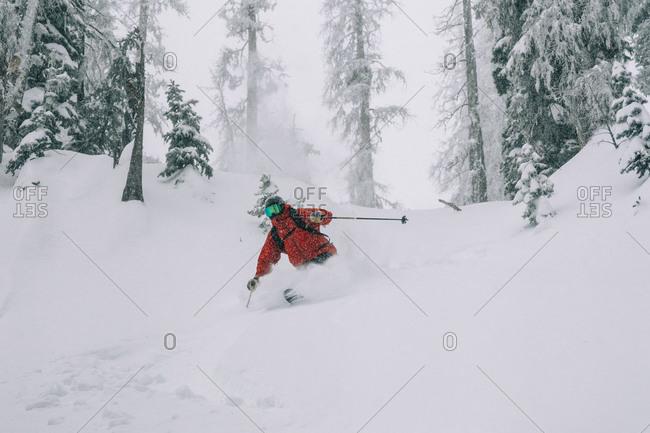 Skier skiing powder through trees in Colorado