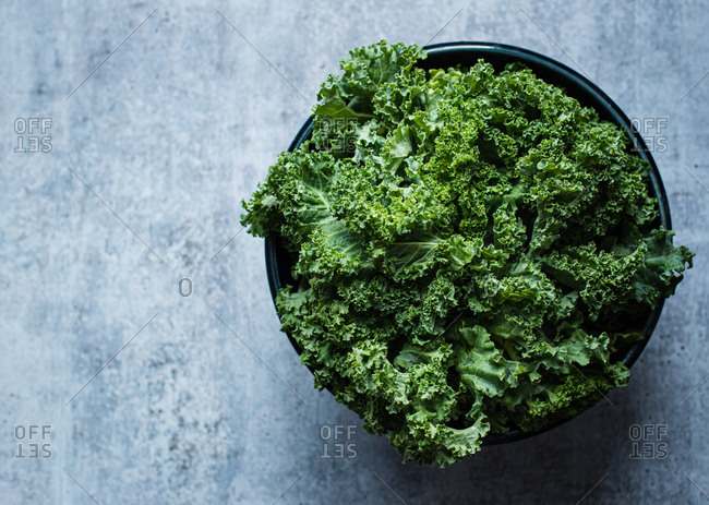 Overhead view of a bowl of kale against a gray cement counter.