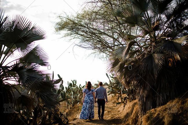 Husband and Wife Holding Hands Walking Away in Cactus Garden
