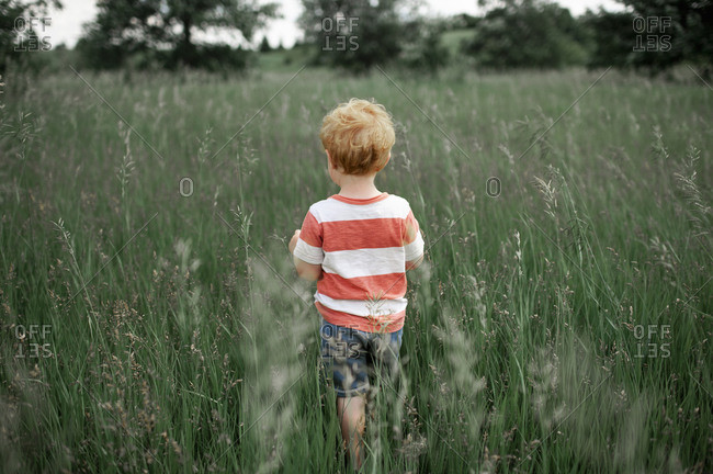 Toddler boy in striped shirt walking into a tall grassy field outdoors