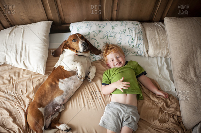 Toddler boy waking up with basset hound dog next to him at home in bed