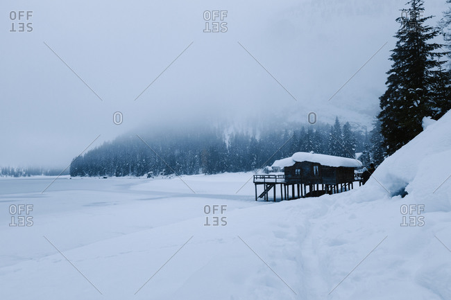 Snow forest and lake on a cold winter day