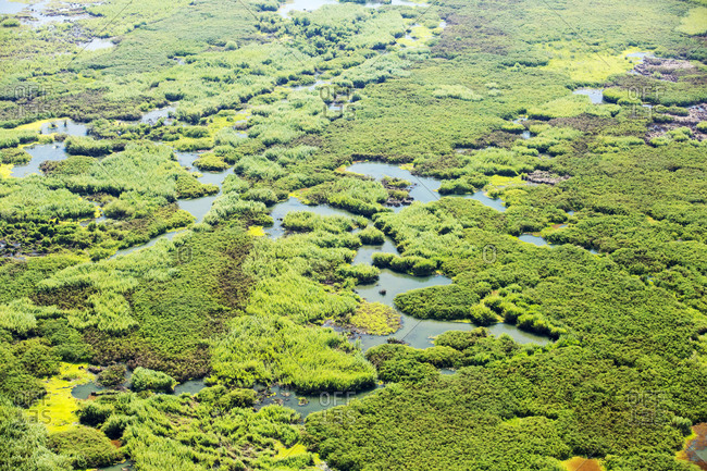 Looking down from the air onto the Elephant Marsh, a huge area of wetland in the Shire Valley, Malawi, Africa.