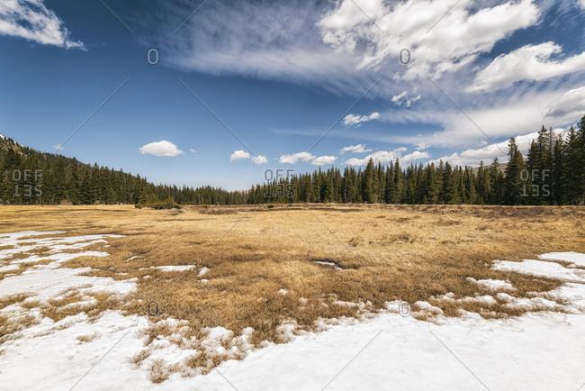 Landscape in the Pecos Wilderness