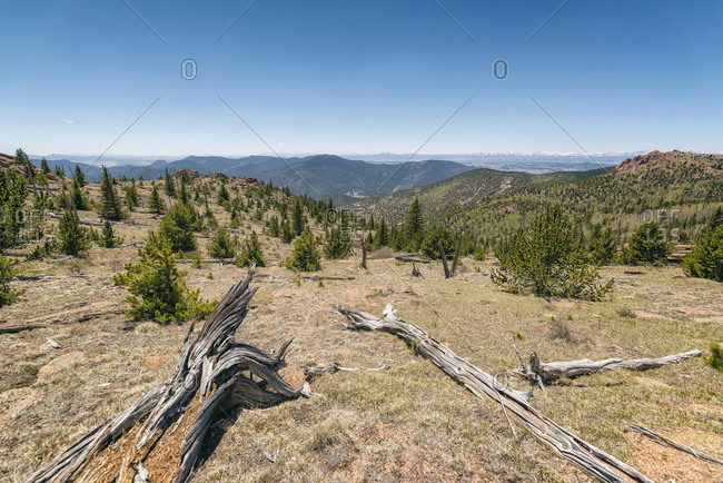 Lost Creek Wilderness, Colorado, USA