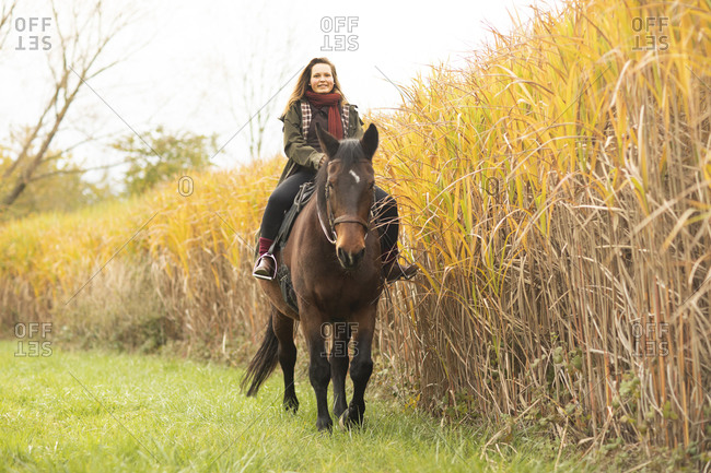 Young horsewoman with a horse outside riding
