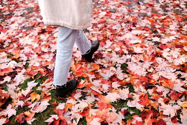 Person walking on beautiful fall foliage during autumn