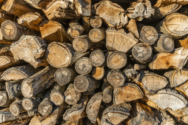 Stacked logs close up