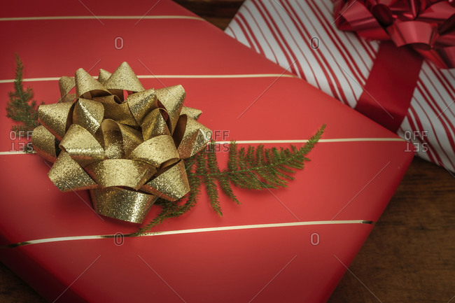 Pine frond under bow on Christmas present