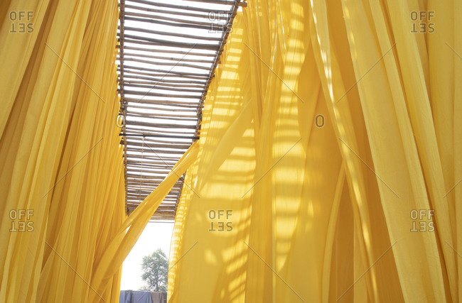 Dyed yellow cloth hanging to dry in Jaipur, India