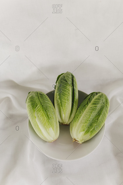 Three romaine lettuce heads in a bowl on white background