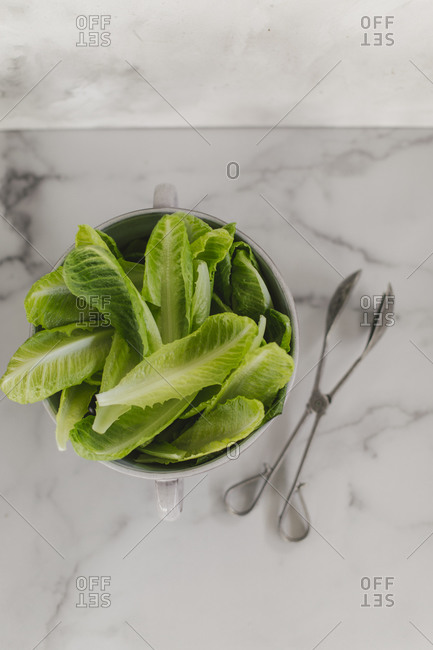 Romain lettuce in a bowl on white marble surface