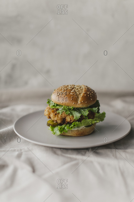 Fried chicken sandwich on a plate on white background