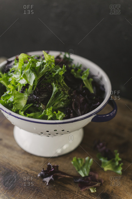 Mixed lettuce leaves in a strainer