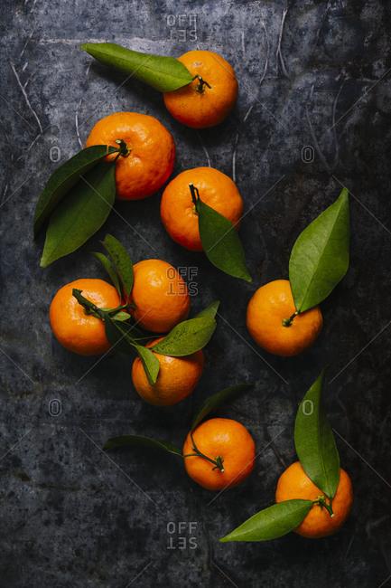 Still life of mandarin oranges overhead shot