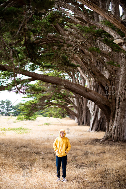 Tween standing in grass next to line of Cypress trees in Point Reyes