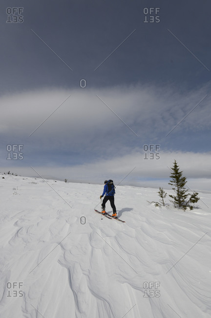 A lone skier skinning up a snowy slope in New Hampshire.