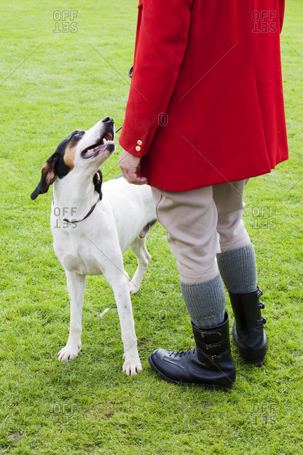 A Hunt master and his fox hound at the Vale of Rydal Sheepdog Trials, Ambleside, Lake District, UK.