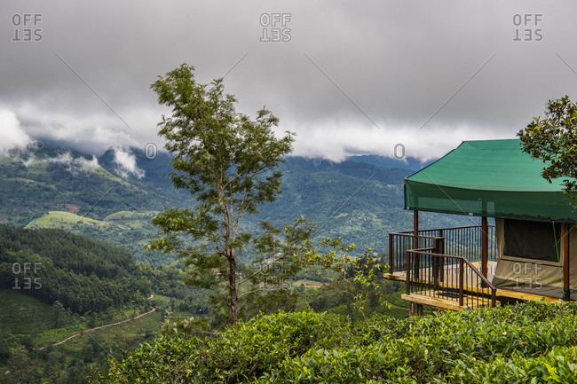 luxury camp at a tea plantation in the Sri Lankan highlands
