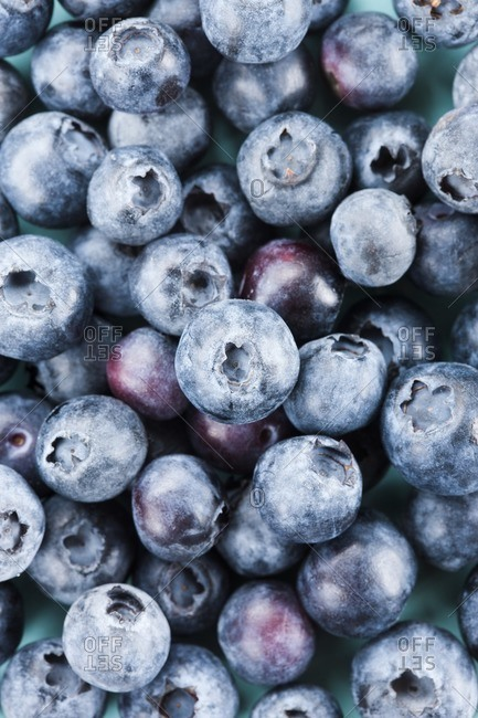 Close up of many blueberries